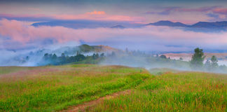 Foggy summer morning in the mountain village. Royalty Free Stock Image