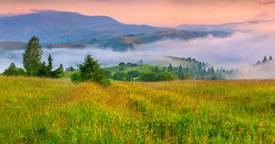 Foggy summer morning in the mountain village. Stock Photo