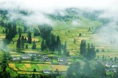 Foggy summer morning in tibet Stock Photo