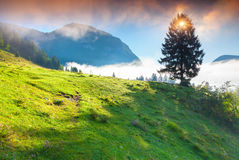 Foggy summer morning in the Triglav national park Stock Photo