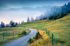 Foggy summer morning in the Triglav national park Royalty Free Stock Photography