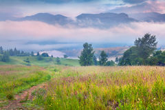 Foggy summer sunrise in foggy Carpathian mountains. Foggy summer sunrise in the foggy Carpathian mountains stock images