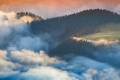 Foggy summer sunrise in the Italian Alps. Ferchetta mountain ran Royalty Free Stock Images