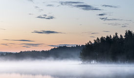 Foggy summernight Stock Photos