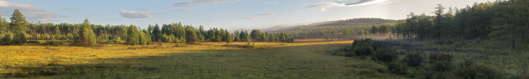 Foggy sunrise. Sunrise in forest on Russian Far East. Panoramic View royalty free stock photo