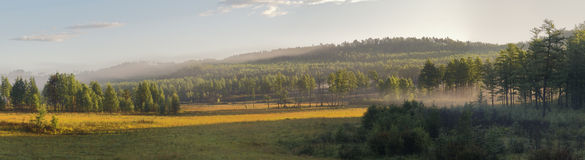 Foggy sunrise. Sunrise in forest on Russian Far East. Panoramic View stock photos