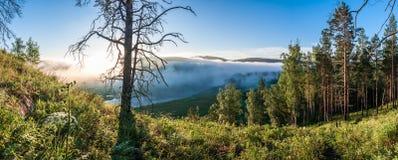 Foggy sunrise above Yuryuzan river valley. Fog at sunrise above Yuryuzan river valley stock photo