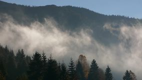 Foggy sunrise in Carpathian mountains stock video