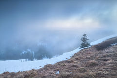 Foggy sunrise on Feldberg mountain top Stock Photos