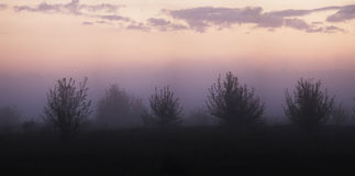 Foggy sunrise on the floodplain. Russia, Ryazan region stock photo