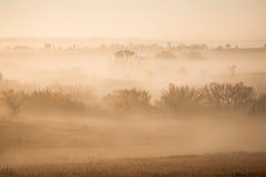 Foggy sunrise Royalty Free Stock Image