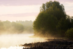 Foggy sunrise on the lake. Russia, Ryazan region stock photos