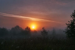 Foggy sunrise. Morning fog at the field Royalty Free Stock Image
