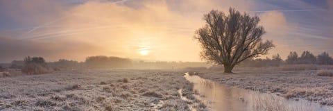 Sunrise over a frozen landscape in The Netherlands Stock Images