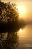 Foggy sunrise over the lake Royalty Free Stock Image