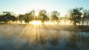 Foggy sunrise over park alley by the lake