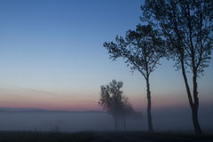 Foggy sunrise in a polish mountain Royalty Free Stock Photography