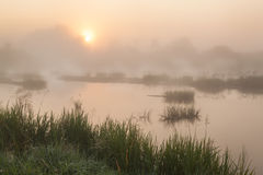Foggy sunrise on a small river Stock Image