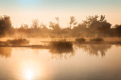 Foggy sunrise on a small river Royalty Free Stock Image