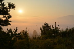 Foggy sunrise. The sun above the fog from top of the hill in the forest Royalty Free Stock Photography