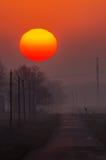 Foggy Sunrise Stock Images