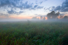 Foggy sunset field of Russia Stock Photography