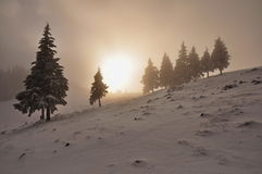 Foggy sunset. Sunset and fog in the winter with ghosts on the horizon Royalty Free Stock Photography