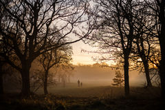 Foggy sunset over Sefton Park. Two people in the distance Stock Images