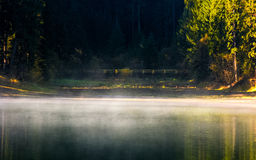 Foggy surface of the forest lake at sunrise Royalty Free Stock Photography