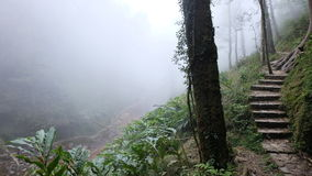 Foggy to go to Love Waterfall & x28;Thác Tình Yêu& x29;, Sapa Vietnam Stock Images