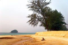 Foggy tropical beach. Royalty Free Stock Photos