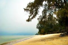 Foggy tropical beach. Stock Photos