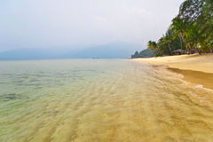 Foggy tropical beach. Royalty Free Stock Photo