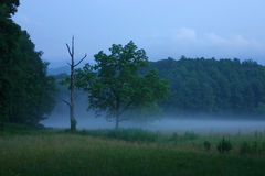 Foggy twilight. Cades Cove, Great Smoky Mountains National Park stock images