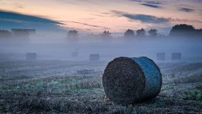 Foggy valley in autumn with hay on field at dawn royalty free stock image