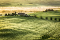 Foggy Valley in the morning, Tuscany Royalty Free Stock Images