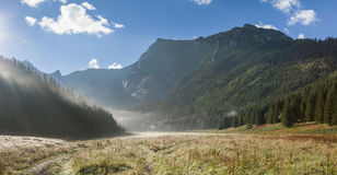 Foggy valley in mountains. Royalty Free Stock Photo