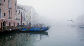Foggy venice Royalty Free Stock Image