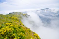 Foggy view in mountains, Madeira, Portugal Royalty Free Stock Images