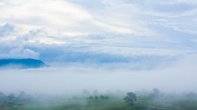 Foggy view on the mountain. From wang nam kiao , Thailand Royalty Free Stock Photo