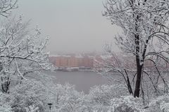 Foggy view over the river and the houses on the other side. Stockholm Sweden. Foggy view over the river and the houses on the other side with snow on the trees royalty free stock photos