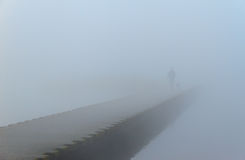 Foggy Walk Stock Photography