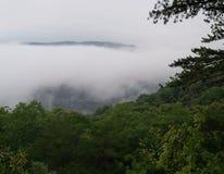 Foggy weather stock photo
