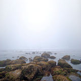 Foggy white sea rocks Stock Photo