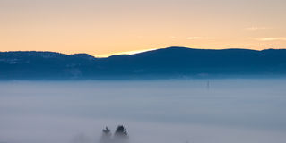 Foggy winter dusk Royalty Free Stock Photography