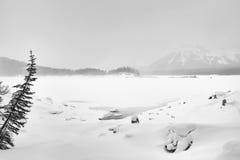 Foggy Winter Kananakis Lake Royalty Free Stock Photo