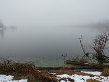 Foggy winter lake inlet with green algae. Foggy winter lake inlet beach with green algae, logs, brush. Winter overcast conditions with snow, fog, logs, and brush royalty free stock images
