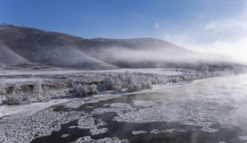 Foggy winter landscape frosty morning over the river and trees in hoarfrost on the shores of Altai mountain Royalty Free Stock Photography
