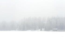 Foggy winter landscape of lake shore Stock Photo