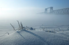 Foggy winter landscape. Winter landscape of foggy morning. Frozen herbs on foreground Royalty Free Stock Images